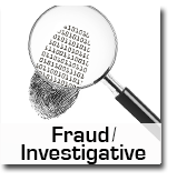 Fraud Investigative