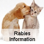 Rabies Prevention